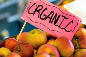 Organic-Apple-in-Market-Image-via-foodrepublic